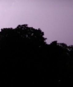 20120608_k-elise_lightning_3-scaled1000